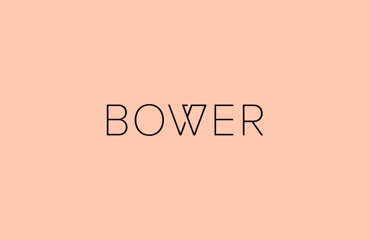 gander-branding-bower